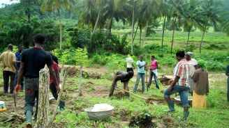 Interns from UPS revitalising Nokoyedzen Moringa and vegetable farm 0 00 11-06